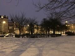 Haie circulaire sous la neige