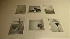 """Taller BIBLIOLAB : """"Fotopoemes, petites experiències fotogràfiques"""" a càrrec de CliCme"""