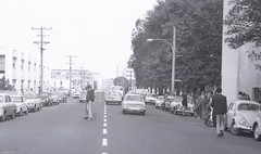 Cumberland Street North, looking south, near University of Otago Library and Otago Museum, c1978