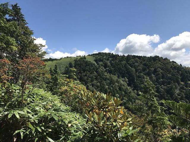 白草山 登山道より山頂部
