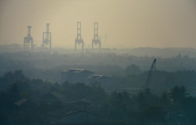 Cranes, Ho Chi Minh City, Vietnam