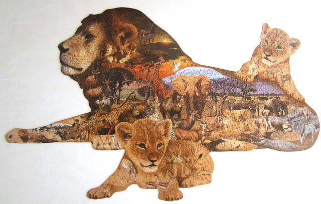 Lion's Pride Dennis Rogers, Canon IXUS 115 HS