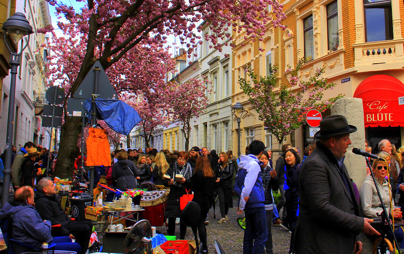Buskers singing at Bonn Cherry blossom festival