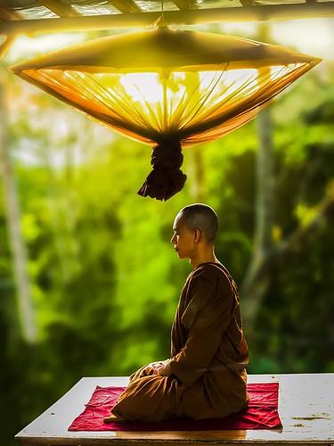 theravada-buddhism-2171647_960_720