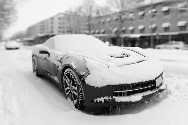 Snow Vette