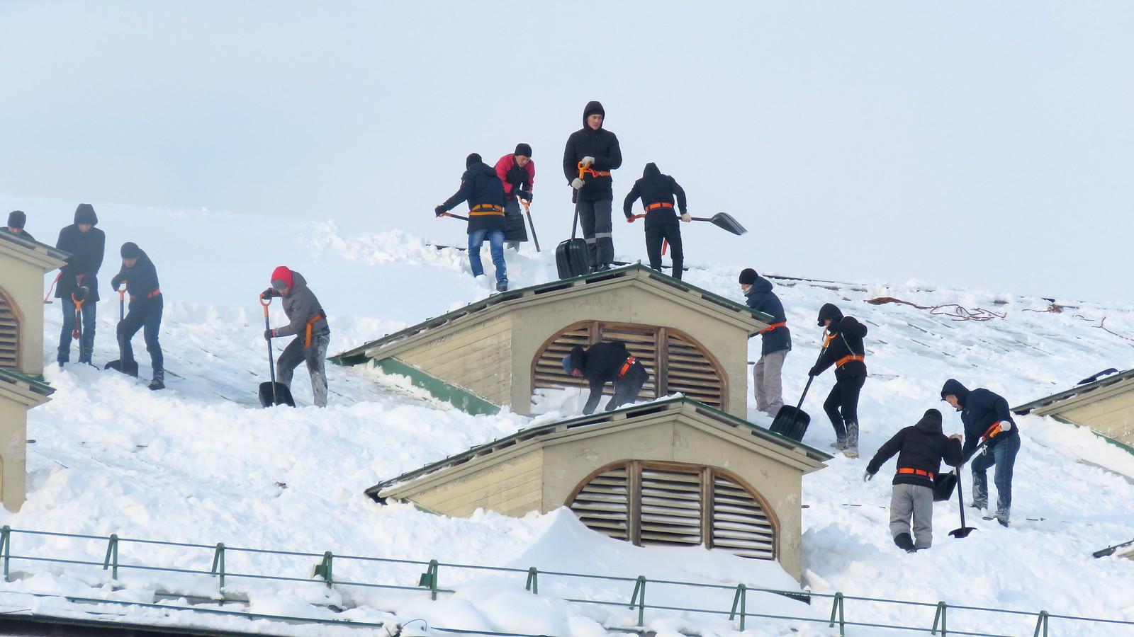 Раб крыши Много