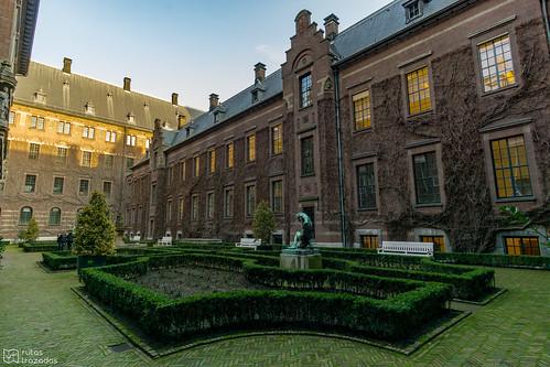 Rotterdam Ayuntamiento Jardin