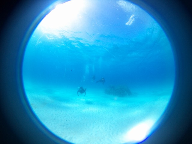 透明度もよくて気持ちのいい黒島でした