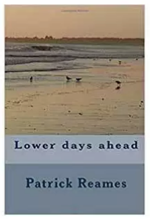 Lower days Ahead nonsense book cover