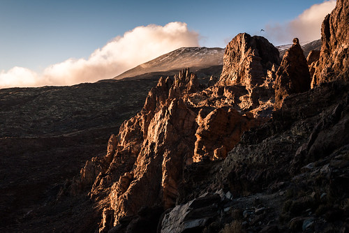 nikon d610 fullframe 50mm fixedfocal primelens mountains sunset teide teidenationalpark rocks sky clouds tenerife canaryislands bird