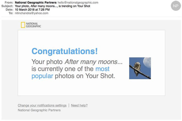 Your photo After many moons is trending on Your Shot
