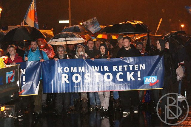 afd demo 12.03.2018 (c) nils borgwardt