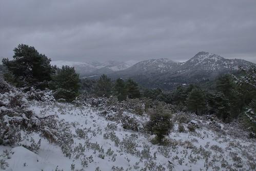 335. La Alfaguara. Parque Natural de la Sierra de Huétor.