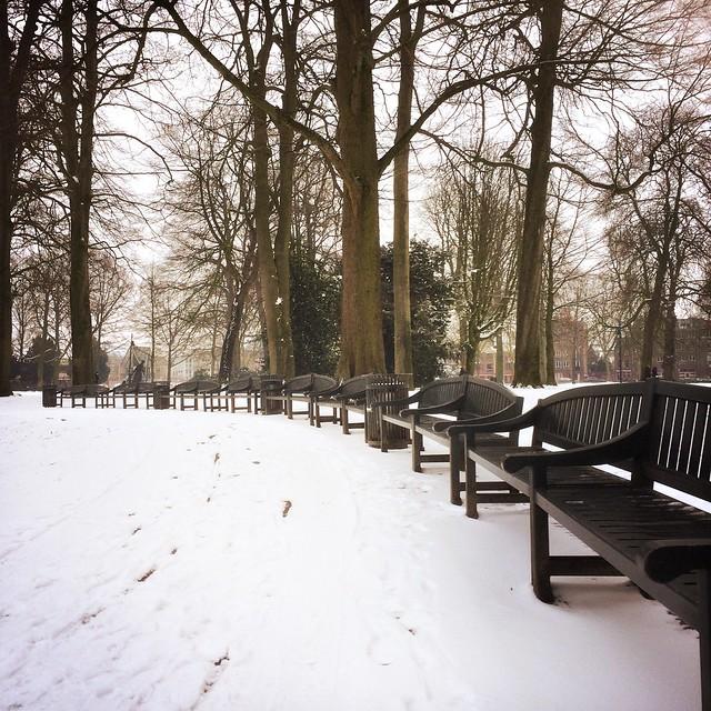 Bankjes in de sneeuw