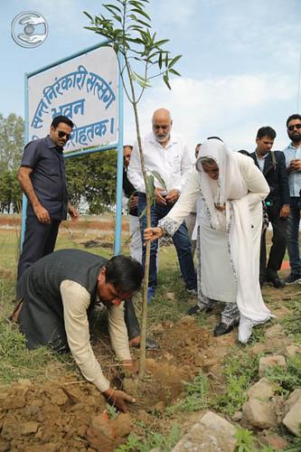 Tree Plantation at the land of Sant Nirankari Satsang Bhawan, Rohtak