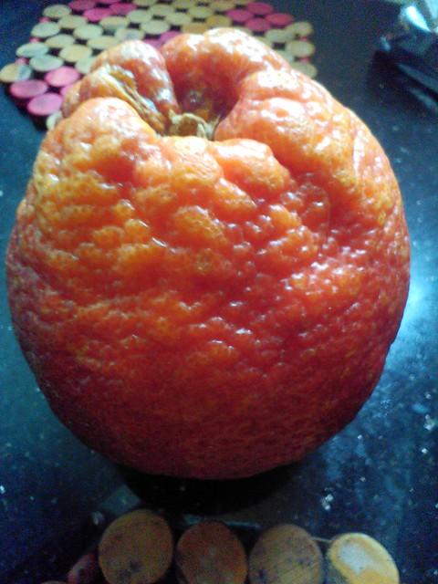 新奇士血橙1加元3个