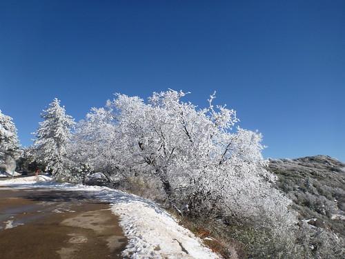 mountlaguna sandiegosnow sandiegocounty snow landscapes