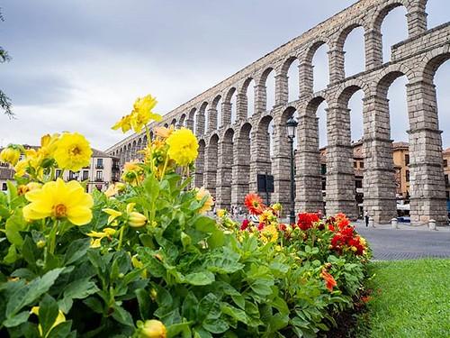 Acueducto de #Segovia. #recuerdosdelverano #summer2017 #olympusomd #olympus