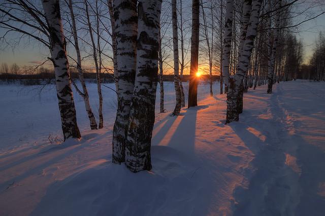 winter's farewell