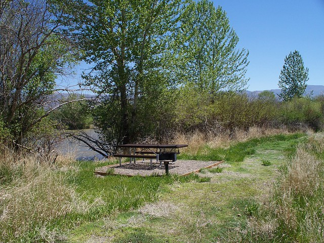 Challis Bridge Recreation Site