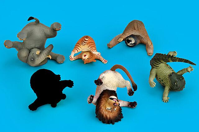 期望的續作強勢登場!研達國際x朝隈俊男《Animal Life 盒抽系列:翻滾吧!白眼》和動物們一起白眼厭世吧!