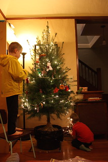 Decorating the Tree | by CaitlinD