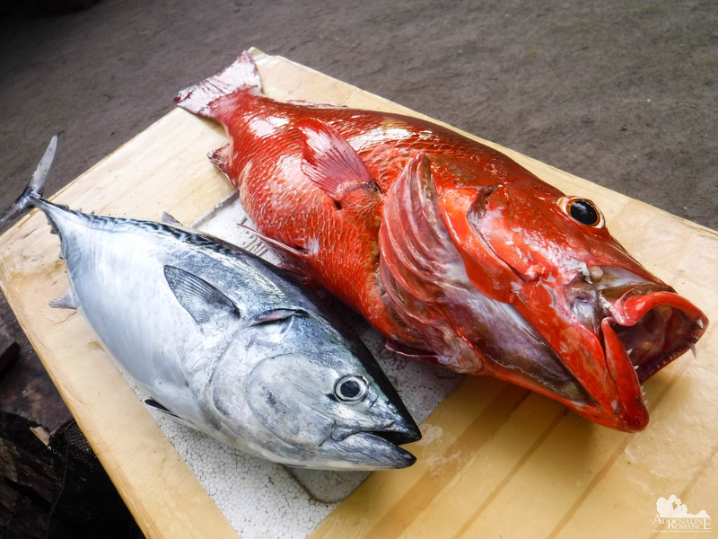 Fresh catch at Digyo Island