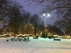 Le haut du parc sous la neige