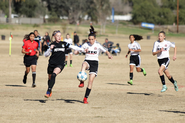 2018 State Cup Presidents Division Championships (12U-14U)