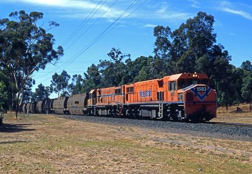 Westrail DBs on Woodchip train