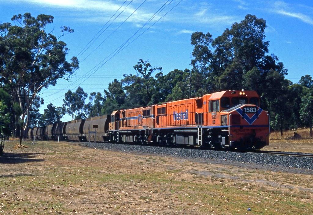 Westrail DBs on Woodchip train by David Arnold