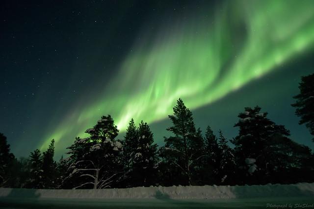20180222-Finland-DSC_6481