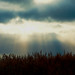 crepuscular rays over the wirral