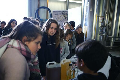 Visite des collégiens de Tartas et Mugron à la SARL Oléandes