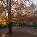 Sydney Gardens - Bath