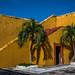 2018 - Mexico - Campeche - Fort San José El Alto - 2 of 5 por Ted's photos - Returns late Feb