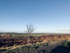 Waldridge Fell - Chester-le-Street