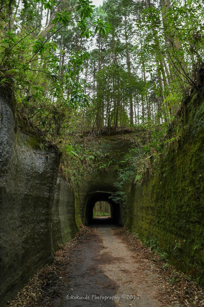 Ichihara Quard's Forest