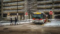 WMATA Metrobus 2011 New Flyer Xcelsior XDE40 #7085