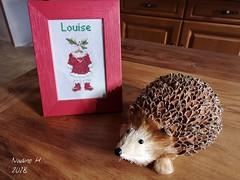 Pour ma nièce. 🎅 - Photo of Le Douhet