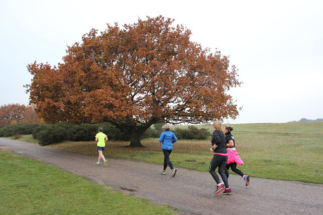 945f0eb7 Now, onto today's event. parkrunday started damp and chilly, the sort of  weather that can't decide if it's clinging mist or solid cloud. No frost or  rain, ...