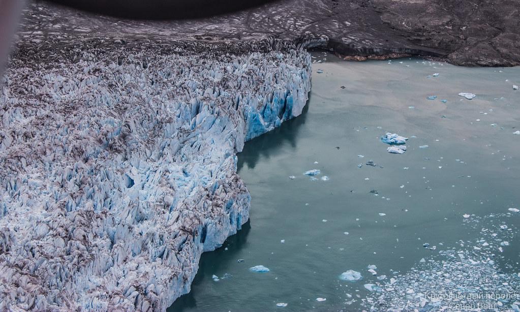 Роддом айсбергов