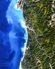 Redwood National Park. Original from NASA. Digitally enhanced by rawpixel.