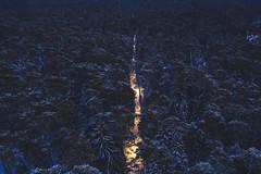 Park at night | Kaunas aerial