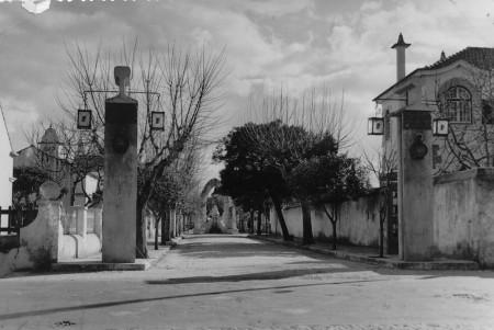Bairro_Camoes