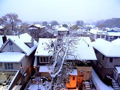 Winter 2018