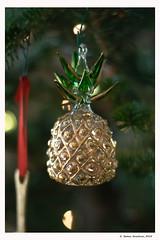 Pineapple from Egypt
