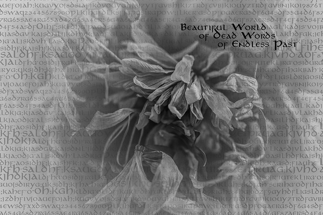 2018.12.13_347/365 - Beautiful World of Dead Words of Endless Past