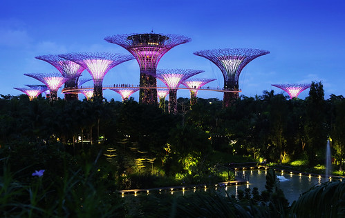 Supertree Grove is a futuristic attraction with light show and sounds