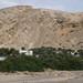 As Sulayf, en périphérie d'Ibri, au pied des monts Hajjar